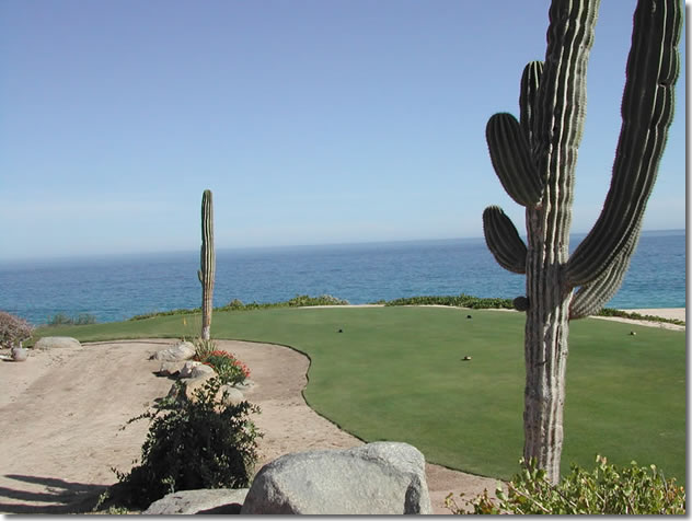 Jack Nicklaus designed Cabo del Sol Ocean Course - 7th green.